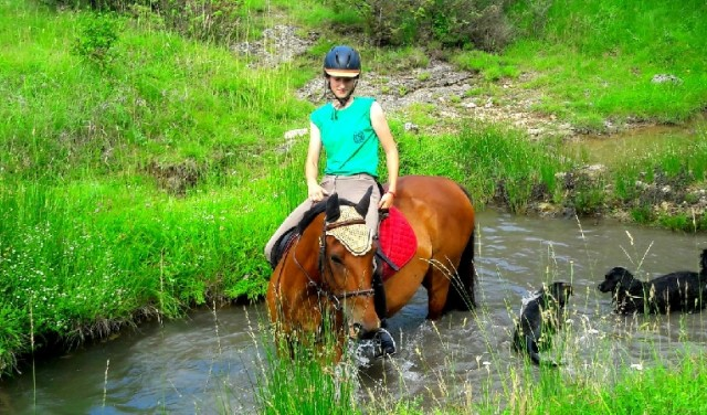 Horse riding near Split